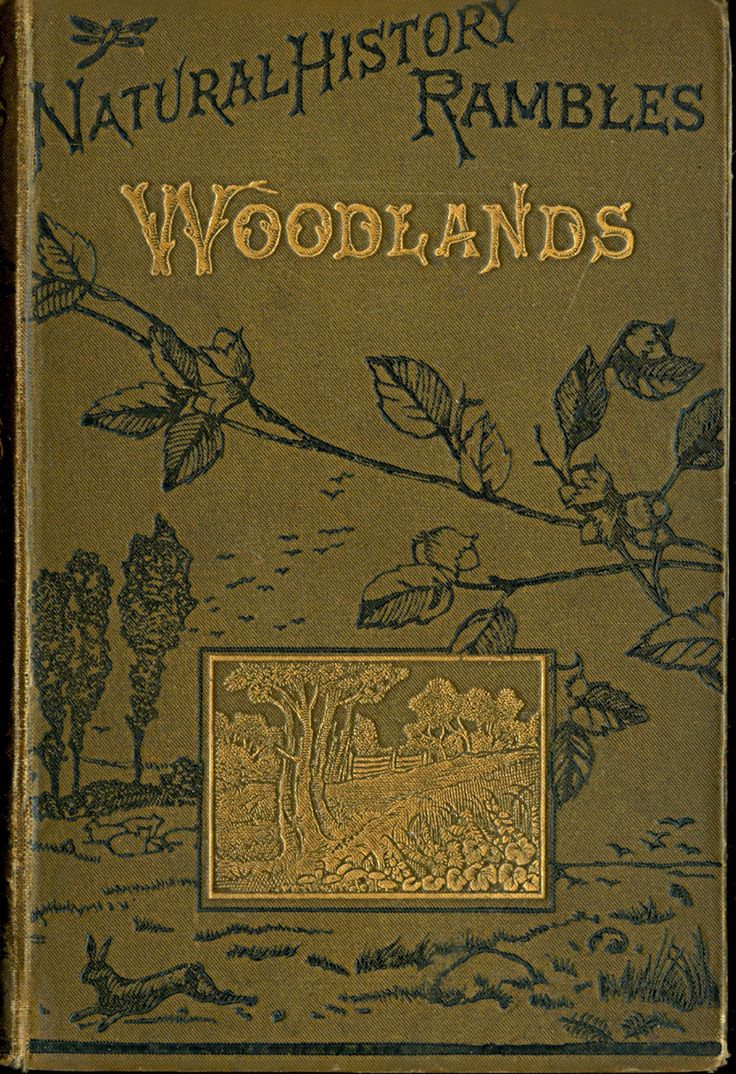 Natural History Rambles WOODLANDS by M.C.Cooke 1885