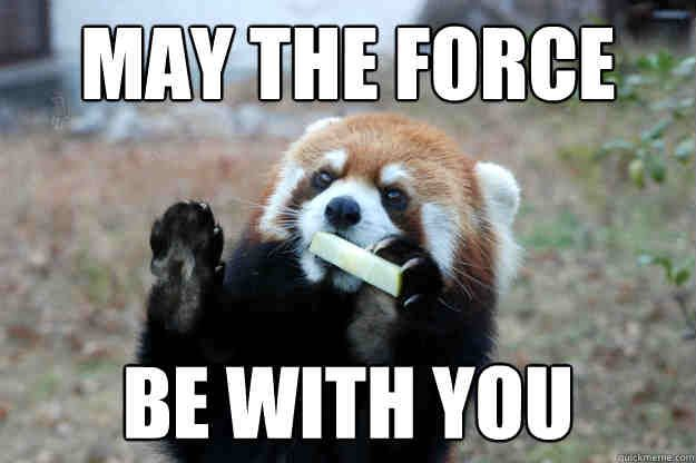 20 Totally Cool May The Force Be With You Memes With Images