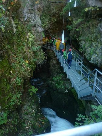 Canyon Rio Sass  Val di Non, Fondo, Italy