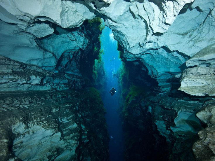 Explore underwater caves.: Bucket List, Favorite Places, Nature, Places I D, Travel, Photo, Piccaninnie Ponds, Cave Diving