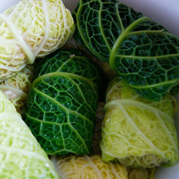 gołąbki w kapuście włoskiej / polish stuffed cabbage with meat  / dinner recipe\
