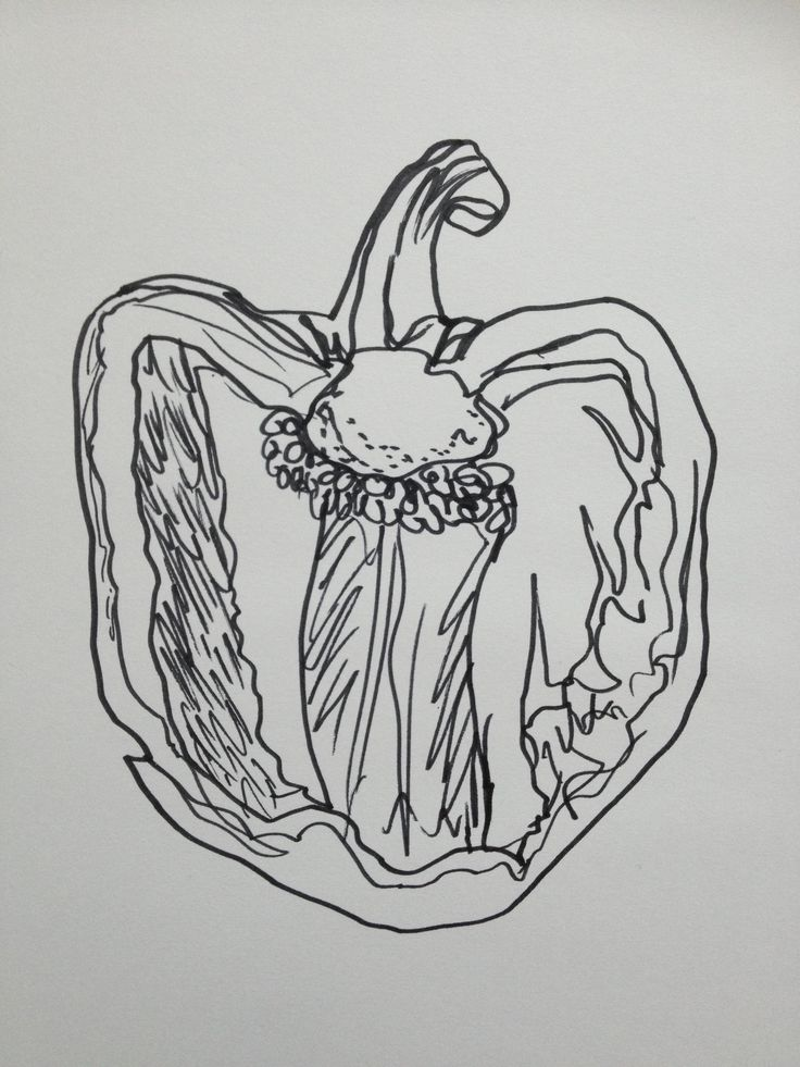 Contour Line Drawing Fruit : Best images about envd peppers on pinterest
