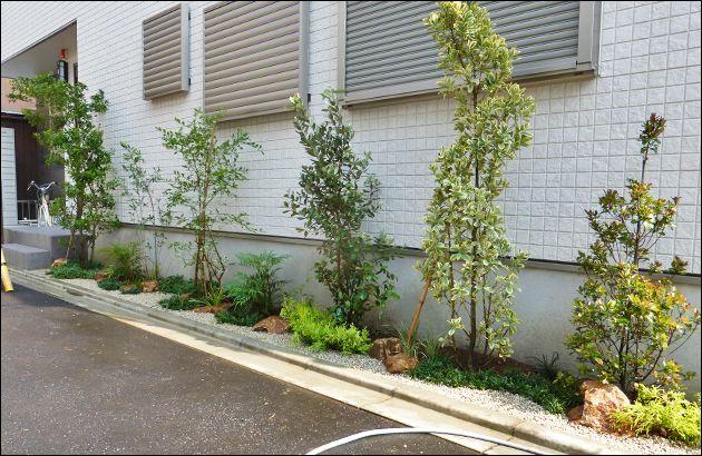 北側道路に面した細長いスペースへ施工をさせていただきました小庭です。北側のネックであります暗さを一掃する様に、明るい資材を使って構成し、陰地で鮮やかさを増す植栽を多く使用致しております。