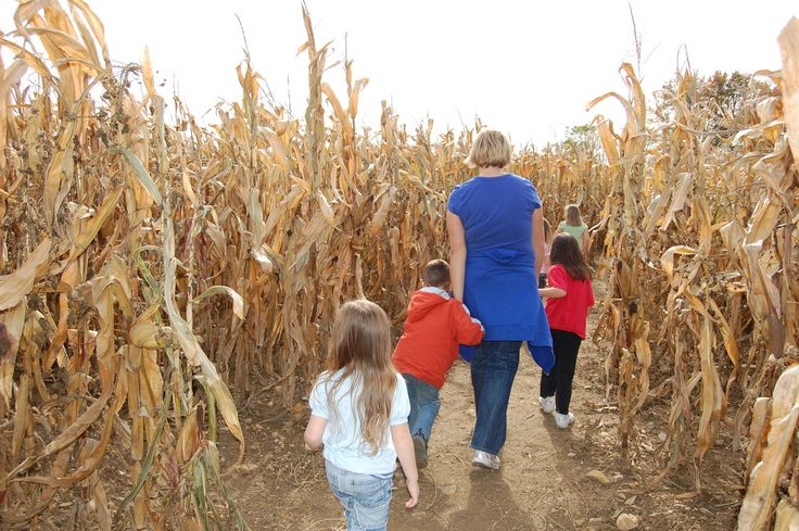 Columbus and central Ohio Pumpkin Patches, Corn Mazes, Hayrides and More - Find Halloween and Fall Fun!