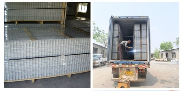Welded Wire Mesh, Wire Mesh Sheet, Welded Wire Panel