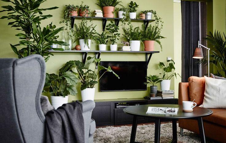 Algumas prateleiras ajudam a criar uma parede de plantas verdes em redor da televisão, ajudando a uma camuflagem mais natural.