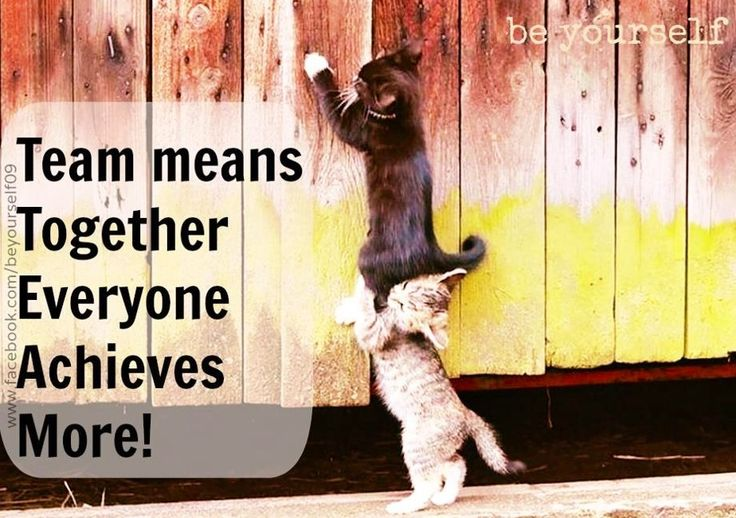 team together everyone achieves more character
