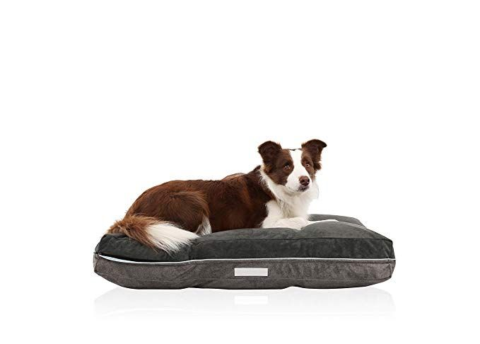 Laifug Super Value Dog Pet Bed With Removable Washable Cover Review Dog Pet Beds Dog Bed Washable Dog Bed