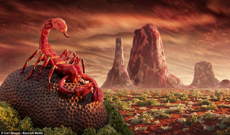 Chilli Pepper Scorpion: This spicy scene sees monumental meat rocks lurking behind the red scorpion, perched on top of a lychee