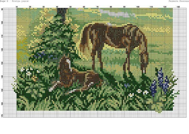 Gallery.ru / Фото #42 - horses - irina41region