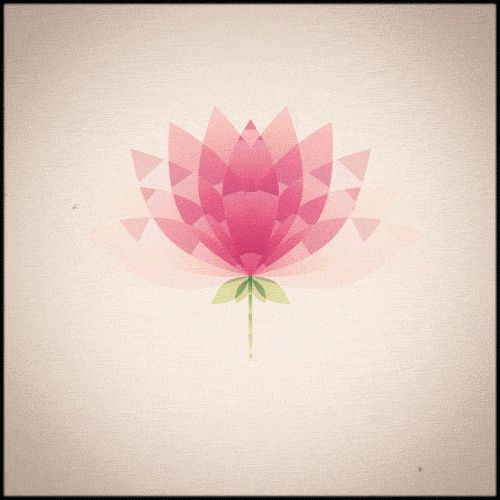 Lotus Animated Geometric Gif Amazing Gif Photos Flowers Lotus