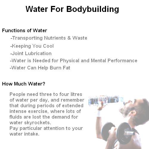 Importance of water for body building