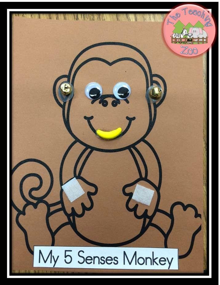 senses preschool activities 25 b 228 sta my five senses id 233 erna p 229 5