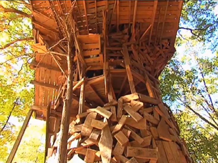 Biggest Treehouse In The World Inside 134 best extreme homes images on pinterest | architecture