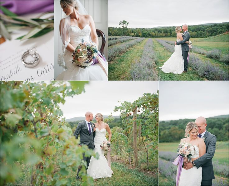 Springfield Manor Winery and Distillery wedding | vineyard bride and groom | winery wedding | Amanda Adams Photography | lavender fields bouquet macro ring photograph