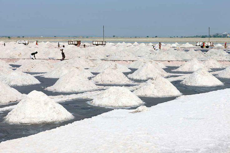 Absolutely no shortage of salt: Govt - http://thehawk.in/news/absolutely-no-shortage-salt-govt/