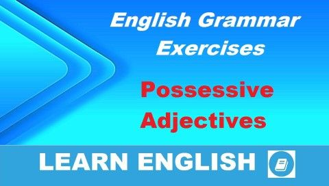 Videó lecke nyelvtanulóknak. Angol nyelvtan gyakorló feladat - Birtokos szerkezet angol birtokos jelzők használatával. My, your, his, her, our, their.