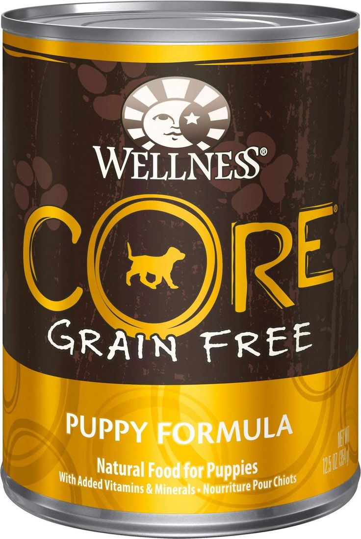 One day wellness core grainfree puppy formula canned dog