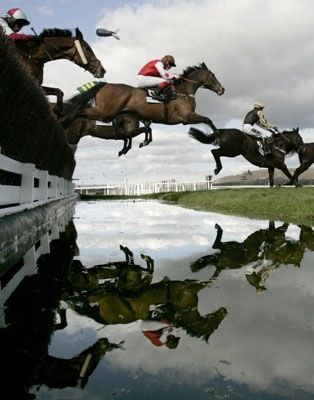 The water jump at Cheltenham Steeple Chase