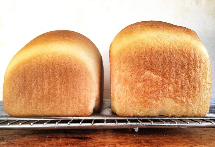 Why bread doesn't rise