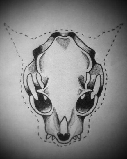 Crâne cat