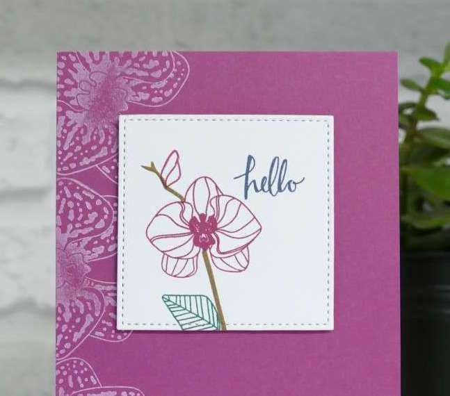 Sarah Berry Stampin' Up! UK Independent Demonstrator   Berry Burst meets the Climbing Orchid Bundle Hello, hello, hello! Today I have some pretty cards to show you made with the new Climbing …