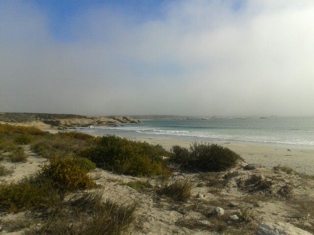 Paternoster,  South African West coast