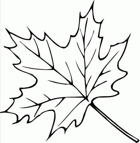 folhas para imprimir   mundo colorido: Imagens de folhas para imprimir e colorir