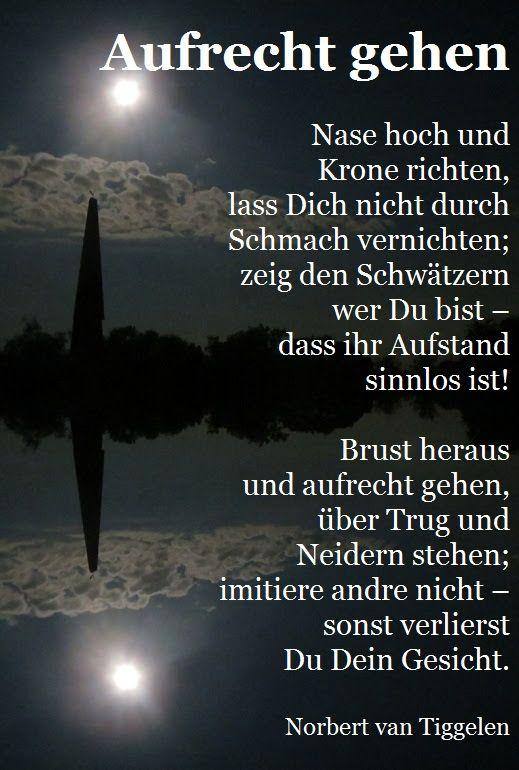 Bild & Text: Norbert van Tiggelen - Norbert van Tiggelen - Google+