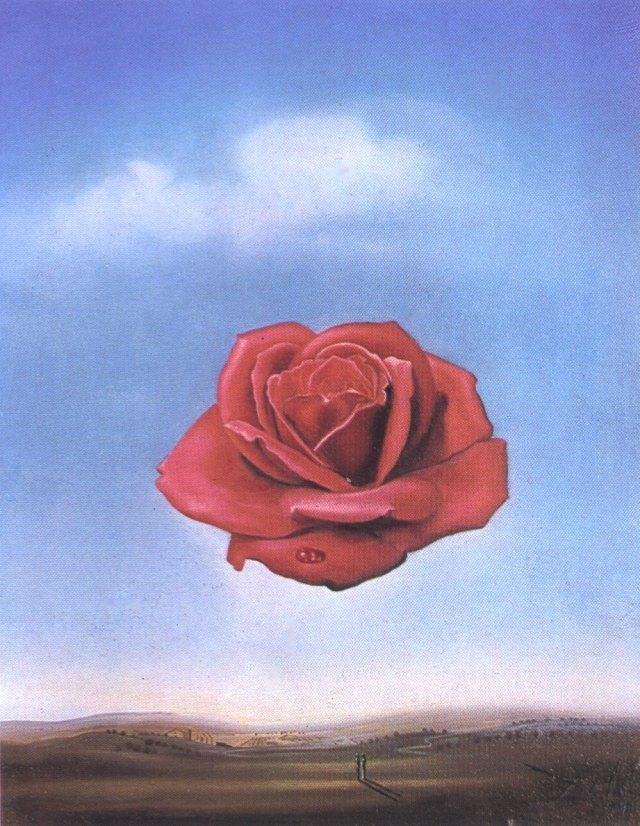 Salvador Dali Meditative Rose 1958 picture