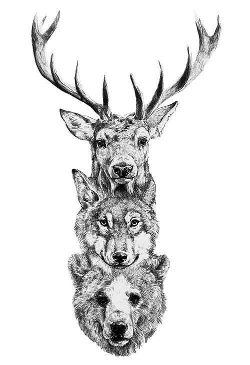 tattoos, bear, wolf, deer, picture, drawing