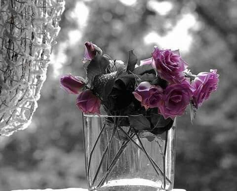 96 best Schwarz weiß mit Farbe images on Pinterest | Farbspritzer ...