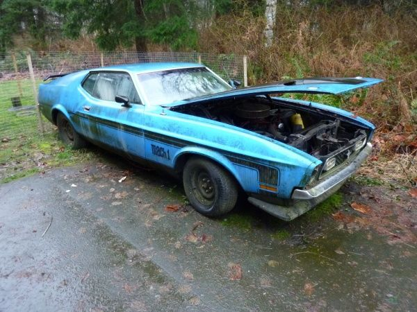 Readers Find1971 Ford Mustang Mach 1 Barnfinds Musclecars