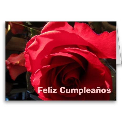 SOLD Card - Feliz Cumpleaños - Rosa Roja:  http://www.zazzle.com/card_feliz_cumpleanos_rosa_roja-137205288056945415  more cards:  http://www.zazzle.com/dean+johnson+feliz+cumplea%C3%B1os+gifts  thanks.