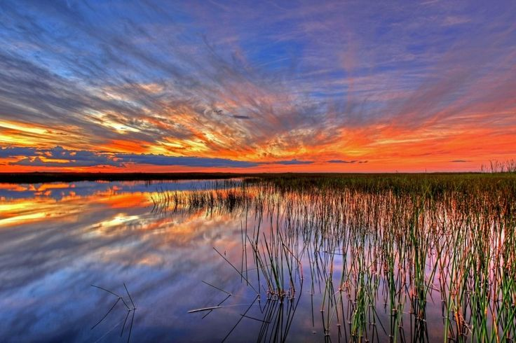 Stunning National Parks To Visit In Florida