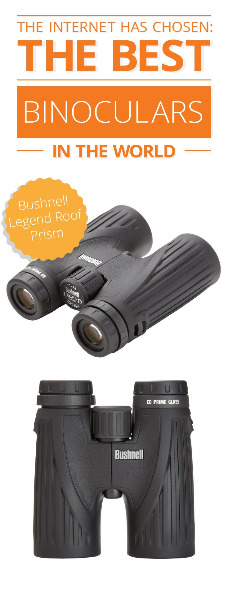 For wildlife enthusiasts, nature lovers, hikers and bird watchers, binoculars are as essential as a good pair of shoes. And finding the right pair is essential in making sure you never miss a thing! Here are the best rated binoculars, as chosen by the internet, and a binocular buying guide to help you choose the right one for you: http://www.comparaboo.com/binoculars?origin=googled2