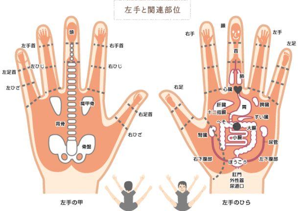 毎日のPC作業などのデスクワークで酷い肩こりや眼精疲労に悩まされている方も多いのではないでしょうか?そこで今回は指を揉んだり刺激するだけで本格的なヨガに近い効果が得られる「指ヨガ」についてご紹介させていただきます。