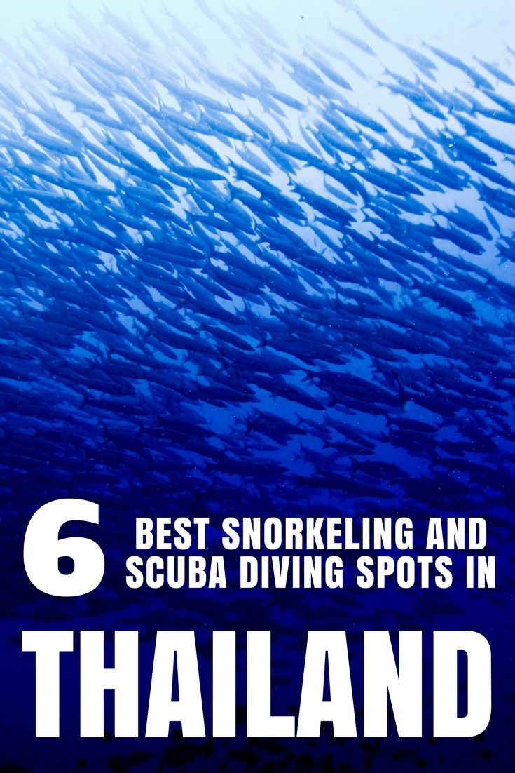 With its rich marine wildlife Thailand is the perfect destination for snorkel and scuba dive fans. Come discover the 6 best places to snorkel and scuba dive in Thailand! #thailand #scubadiving #snorkeling