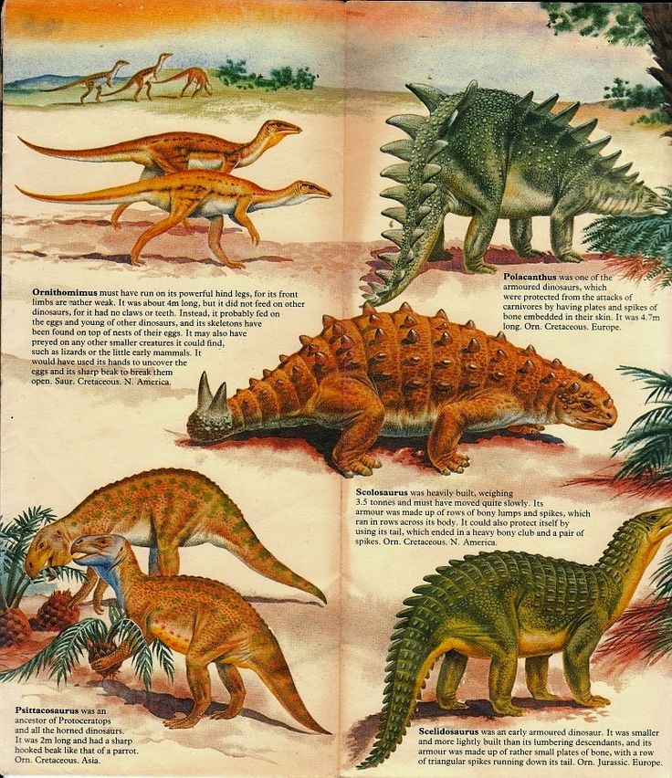 Dinosaurs vs. Beasts