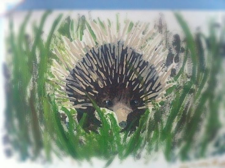 annika's echidna painting | Hedgehog Art | Pinterest ...