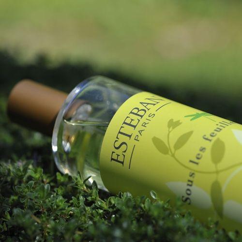Esteban Paris home perfumes. Sous les feuilles room spray.