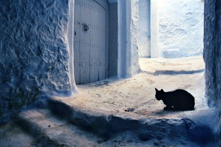 Στη μπλε πόλη της Medina.  ©Pascal Mannaerts