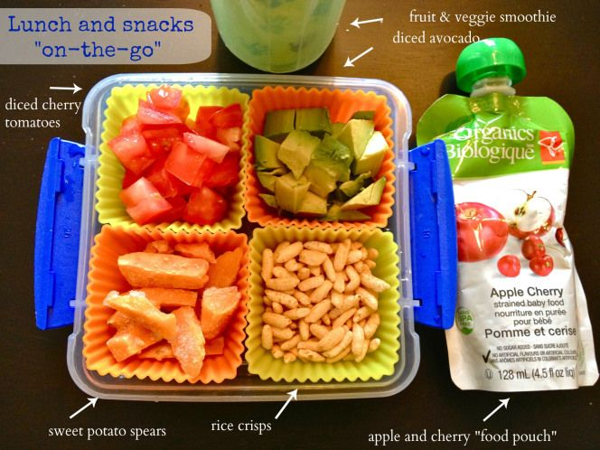 Real food for toddlers breakfast lunch and dinner