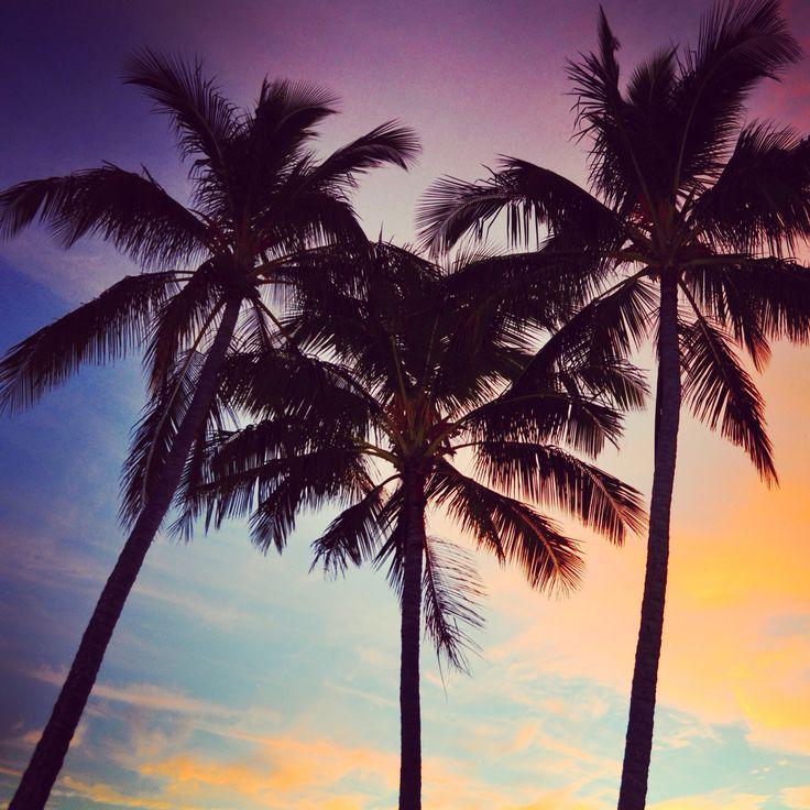 Tangalooma Island Resort, Moreton #VisitBrisbane #ThisIsQueensland #SeeAustralia