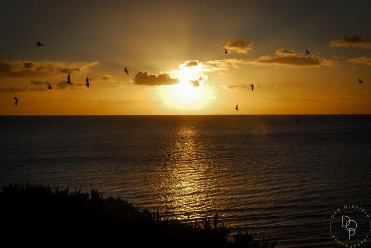 Sunset in Frankston, Australia - Dan Oldfield Photography
