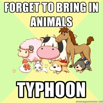Forget to Bring In Animals : Typhoon