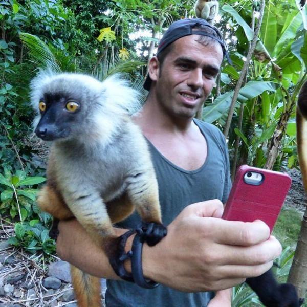 @sergiofanara ha condiviso la sua #scimmia (letteralmente!!!) su http://www.monkifrog.com/monkifriends! *** Io vado in scimmia con i selfie, selfie del buongiorno, selfie post corsa, selfie della buona notte o post palestra.... Questo secondo me è uno dei più riusciti, Selfie con Lemure!!! *** #sharemonki #monkifriends #monkifrog #brand #monky #contest #contestitalia #photocontest #lemure #animal #nature #selfie