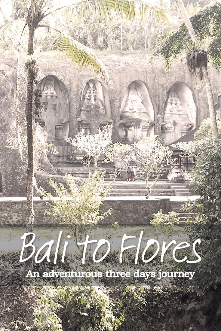 An Adventurous Three Days Journey From Bali To Flores. Read my Blog now and share if you like it :)