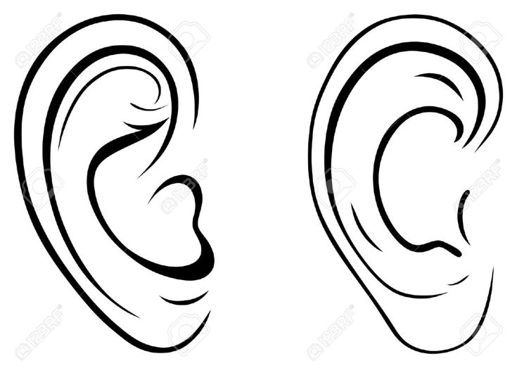 Human Ears Clipart Black And White - Google Search