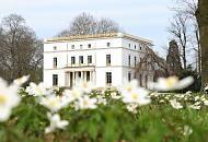 116_2033 | Auf einer Wiese im Jenischpark in Hamburg-Klein Flottbek blühen die weißen Waldanemonen - die Buschwindröschen sind ein eindrucksvolles Zeichen des Frühlings - die Bäume sind noch kahl. Im Hintergrund das prächtige Jenischhaus;  das klassizistische Landhaus wurde 1834 fertig gestellt - der Architekt war Franz Gustav Forsmann.